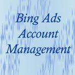 Bing Ads account management
